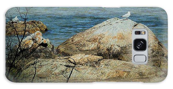 Seagull On A Rock Galaxy Case