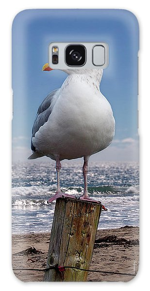 Seagull On The Shoreline Galaxy Case