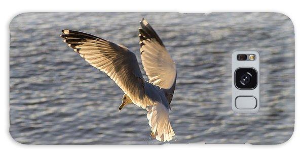 Seagull Over Cape Fear River Galaxy Case