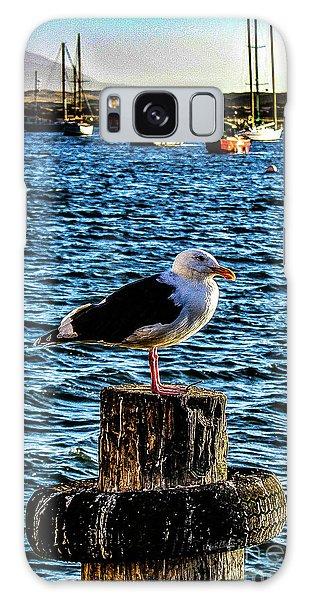 Seagull Perch Galaxy Case