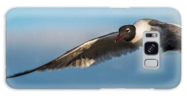 Seagull Portrait In Flight Galaxy Case