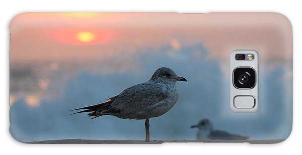 Seagull Seascape Sunrise Galaxy Case