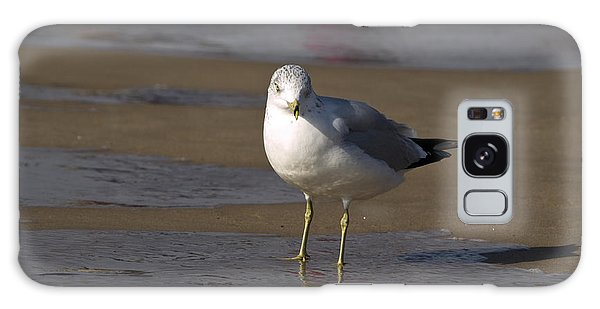 Seagull Standing Galaxy Case