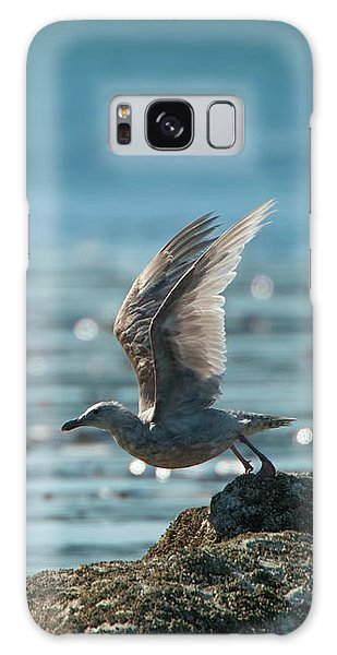 Seagull Takeoff Galaxy Case