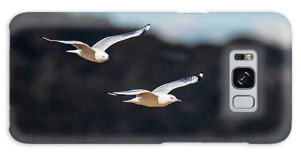 Seagulls In Flight Galaxy Case