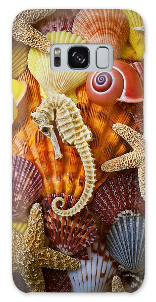 Seahorse And Assorted Sea Shells Galaxy Case by Garry Gay