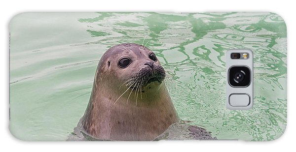 Seal In Water Galaxy Case