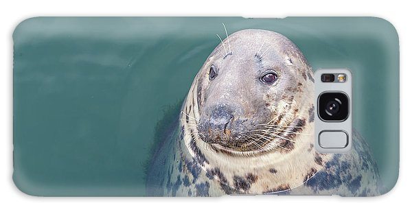 Seal With Long Whiskers With Head Sticking Out Of Water Galaxy Case