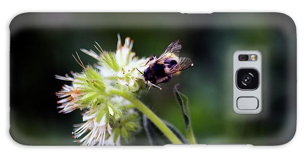 Searching For Pollen Galaxy Case