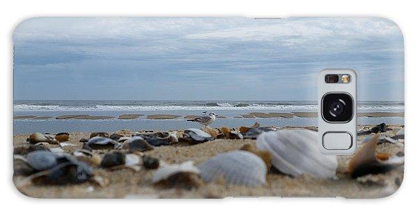 Seashells Seagull Seashore Galaxy Case