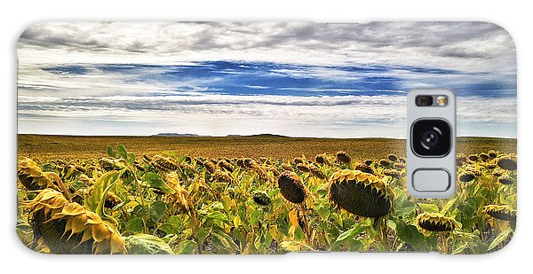 Seasons In The Sun Galaxy Case