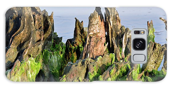 Seaweed-covered Beach Stump Mountain Range Galaxy Case by Bruce Gourley