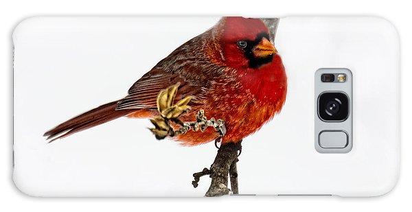 Second Cardinal Galaxy Case