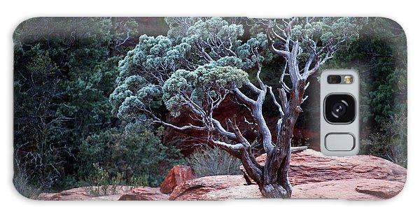 Sedona Tree #3 Galaxy Case