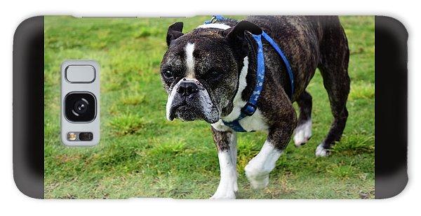 Leroy The Senior Bulldog Galaxy Case