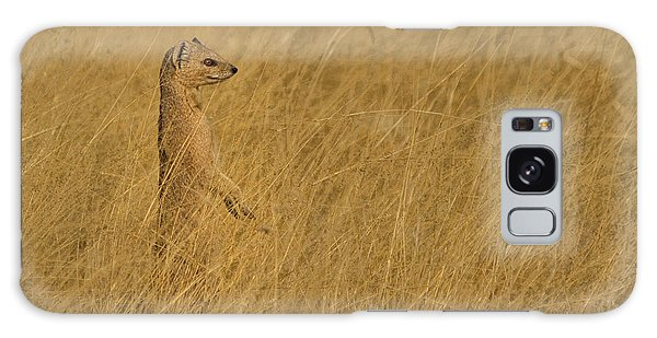 Meerkat Galaxy Case - Sentinel by Linda Oliver