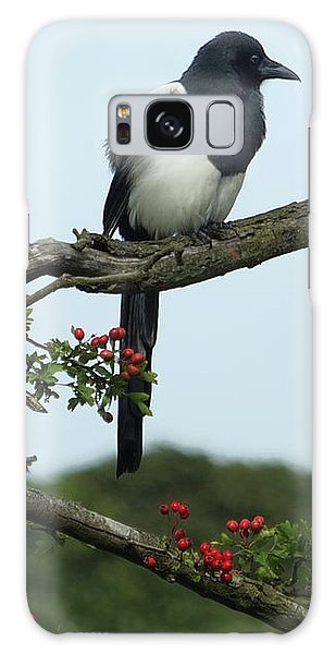 September Magpie Galaxy Case by Philip Openshaw