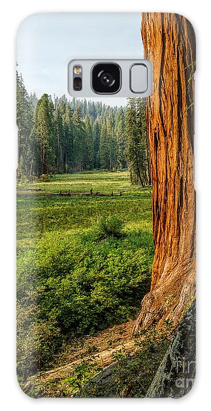 Sequoia Np Crescent Meadows Galaxy Case by Daniel Heine