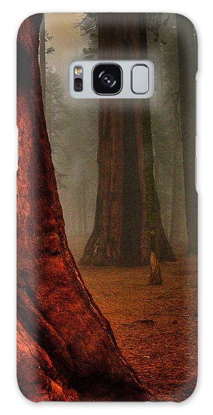 Sequoias In The Clouds Galaxy Case