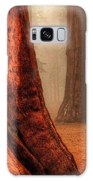 Sequoias Touching The Clouds Galaxy Case