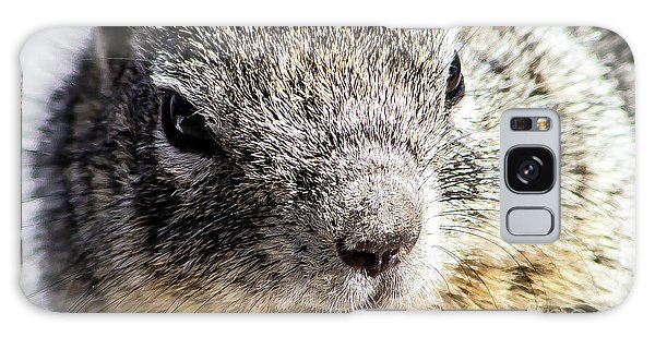 Serious Squirrel Galaxy Case
