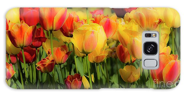 Galaxy Case featuring the photograph Seriously Spring - Bordered by Wendy Wilton