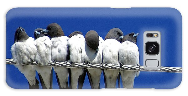 Swallow Galaxy Case - Seven Swallows Sitting by Holly Kempe