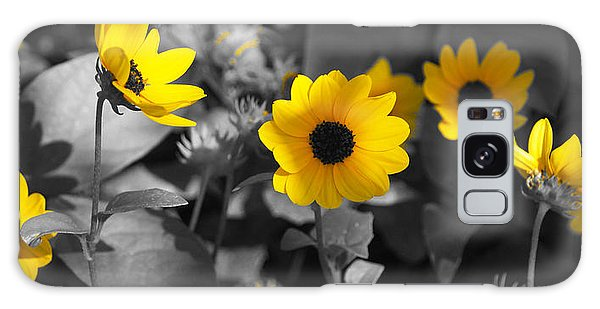 Shaded Daisies Galaxy Case