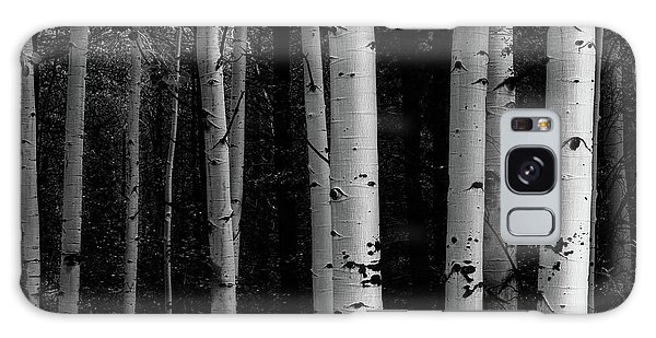 Galaxy Case featuring the photograph Shades Of A Forest by James BO Insogna