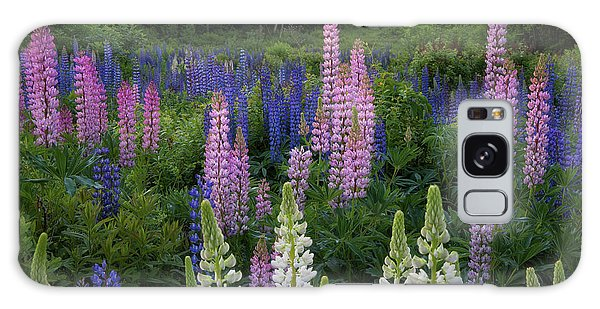 Shades Of Lupines Galaxy Case