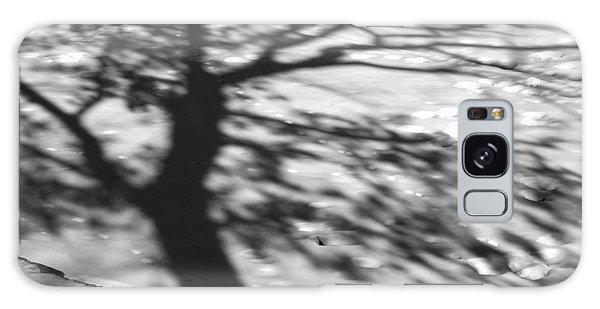 Shadow Tree  Herrick Lake  Naperville Illinois Galaxy Case