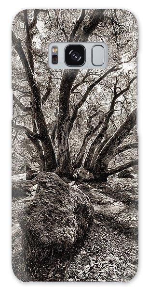 Shadow Tree Galaxy Case