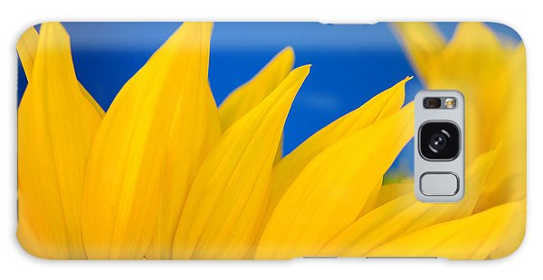 Shady Shy Sunflowers Galaxy Case