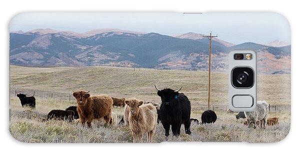 Shaggy-coated Cattle Near Jefferson Galaxy Case