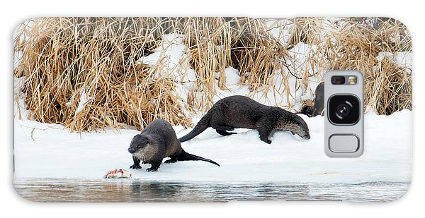 Otter Galaxy Case - Sharing A Meal by Mike Dawson