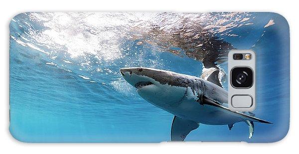 Shark Rays Galaxy Case by Shane Linke