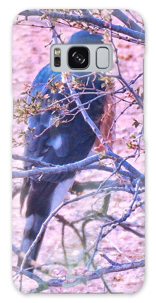 Sharp-shinned Hawk Hunting In The Desert 2 Galaxy Case