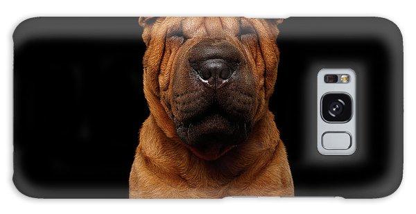 Sharpei Dog Isolated On Black Background Galaxy Case