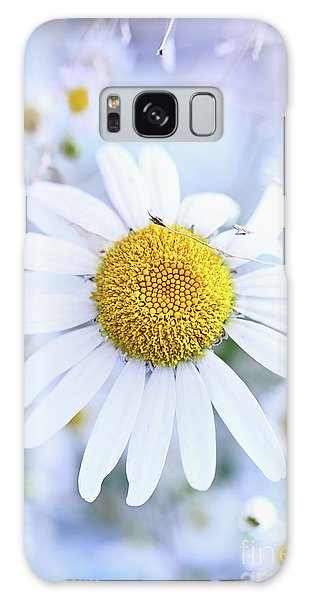 Shasta Daisy Galaxy Case