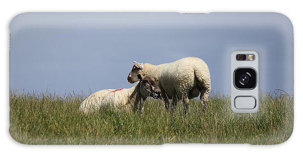 Sheep 4221 Galaxy Case