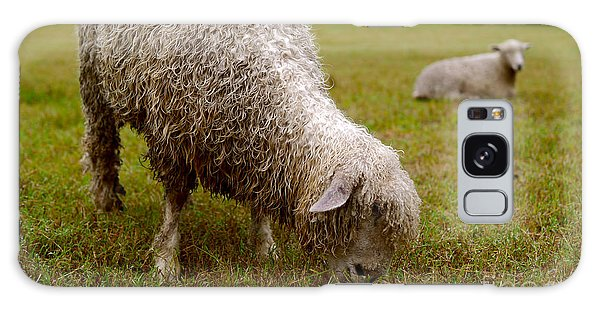 Sheep Begin A New Day Galaxy Case