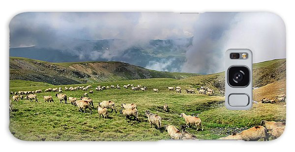 Sheep In Carphatian Mountains Galaxy Case