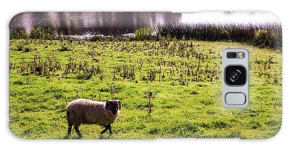 Sheep In Eniskillen Galaxy Case