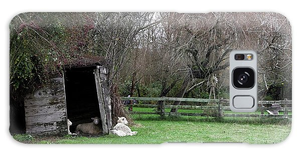 Sheep Shed Galaxy Case