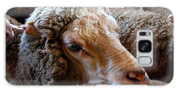 Sheep To Be Sheared Galaxy Case