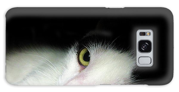 Shelter Cat Galaxy Case