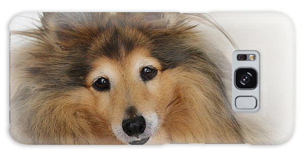 Sheltie Dog - A Sweet-natured Smart Pet Galaxy Case