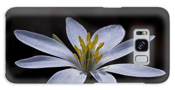 Shimmering Petals Galaxy Case