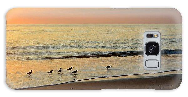 Shorebirds 9/4/17 Galaxy Case