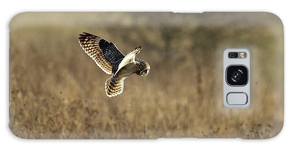 Short-eared Owl About To Strike Galaxy Case